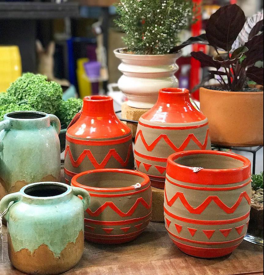 Como escolher um vaso para minha planta