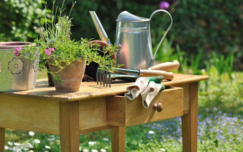 Quais as ferramentas para jardinagem que preciso ter em casa?