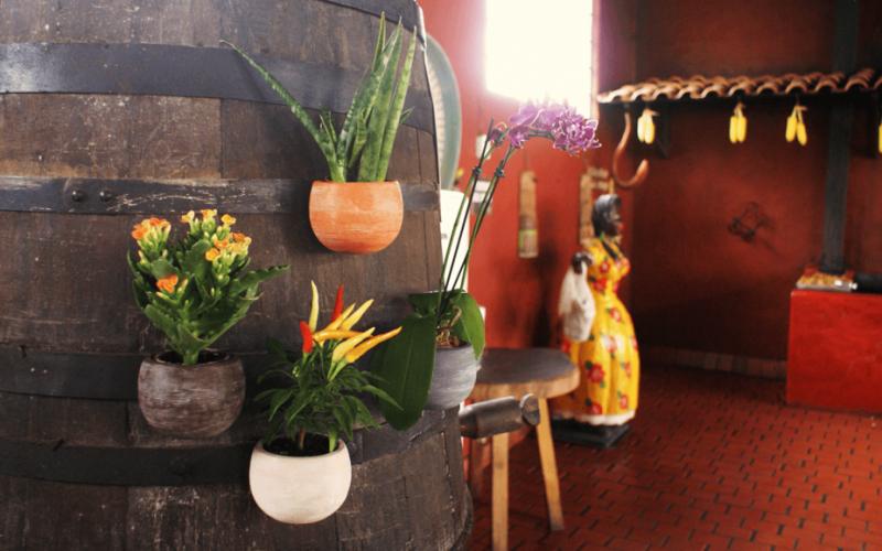 Vasos Magnéticos: Decore sua casa com praticidade e beleza