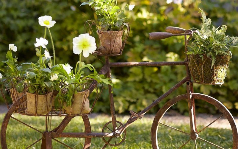 6 dicas para transformar seu jardim