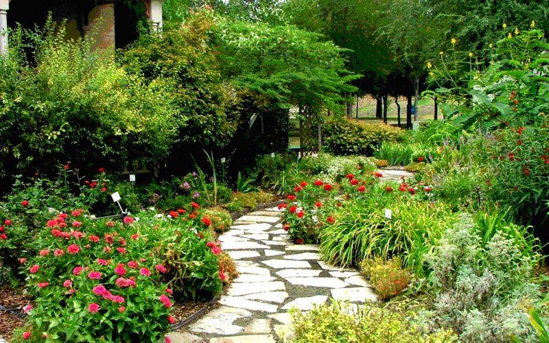 Conheça 5 estilos diferentes de jardins para te inspirar