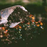 9 acessórios indispensáveis para o cultivo do seu jardim.