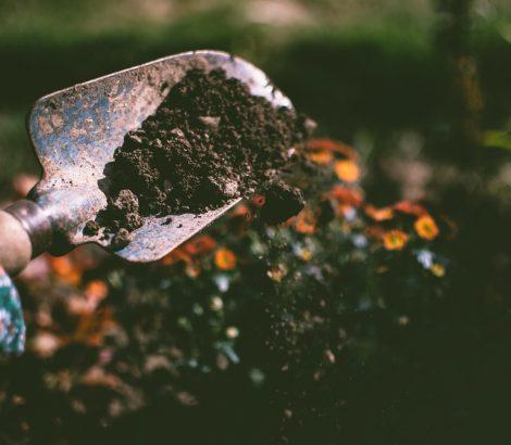 ferramentas de jardinagem